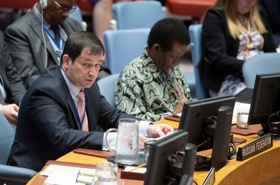 Statement by Chargé d'Affaires of the Russian Federation Dmitry Polyanskiy at the UN Security Council meeting on UNAMID